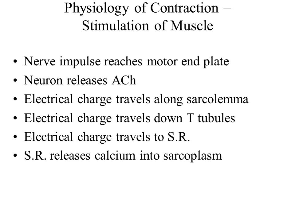 Physiology of Contraction – Stimulation of Muscle