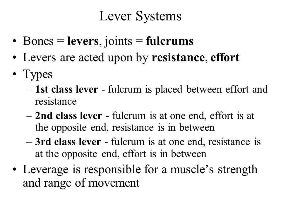Lever Systems Bones = levers, joints = fulcrums