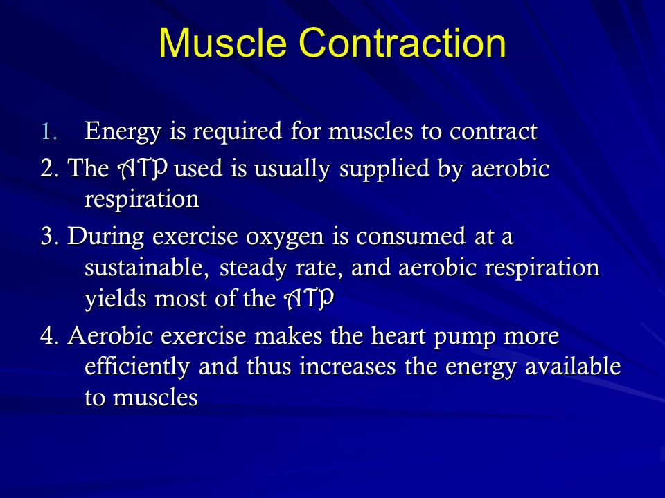 Muscle Contraction Energy is required for muscles to contract