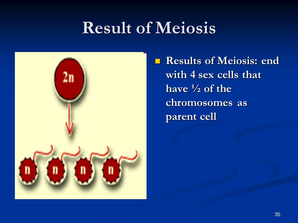 Result of Meiosis Results of Meiosis: end with 4 sex cells that have ½ of the chromosomes as parent cell.