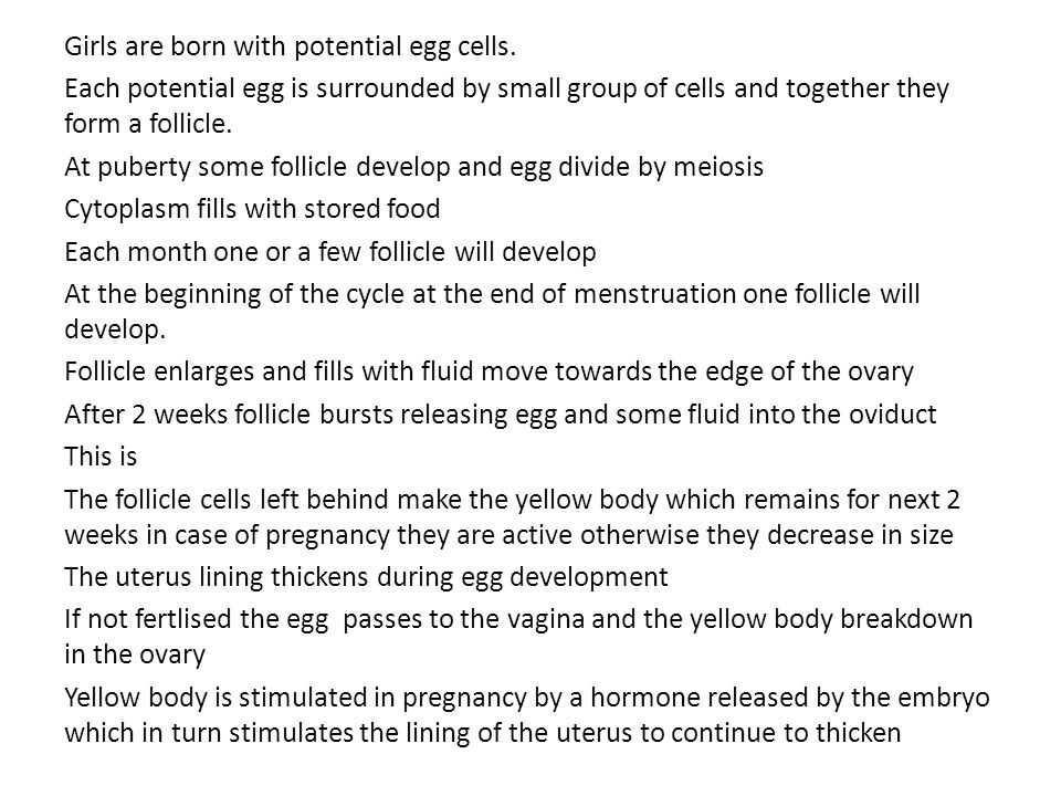 Girls are born with potential egg cells