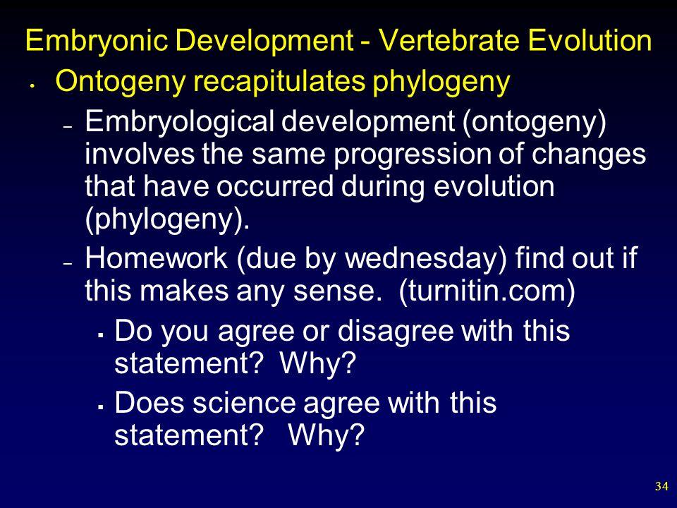 Embryonic Development - Vertebrate Evolution