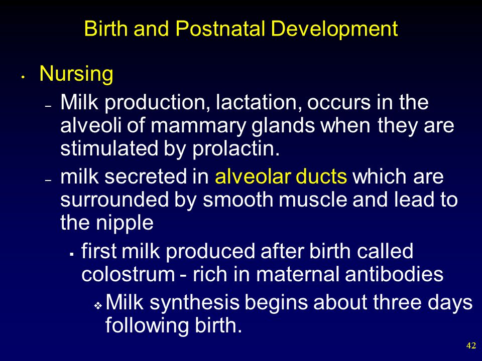 Birth and Postnatal Development
