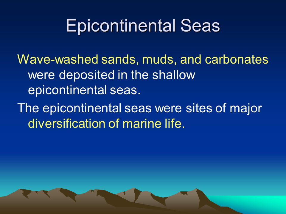 Epicontinental Seas Wave-washed sands, muds, and carbonates were deposited in the shallow epicontinental seas.