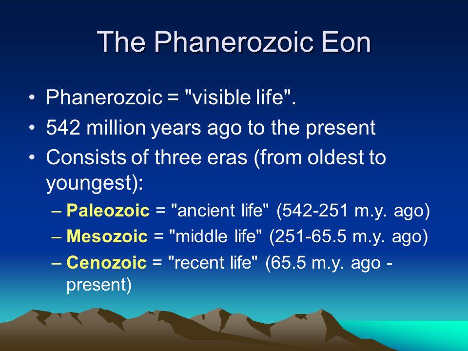 The Phanerozoic Eon Phanerozoic = visible life .