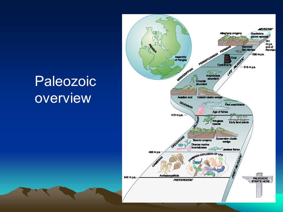 Paleozoic overview