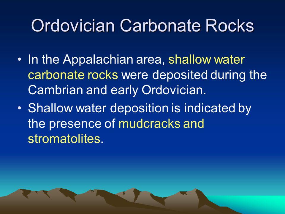 Ordovician Carbonate Rocks