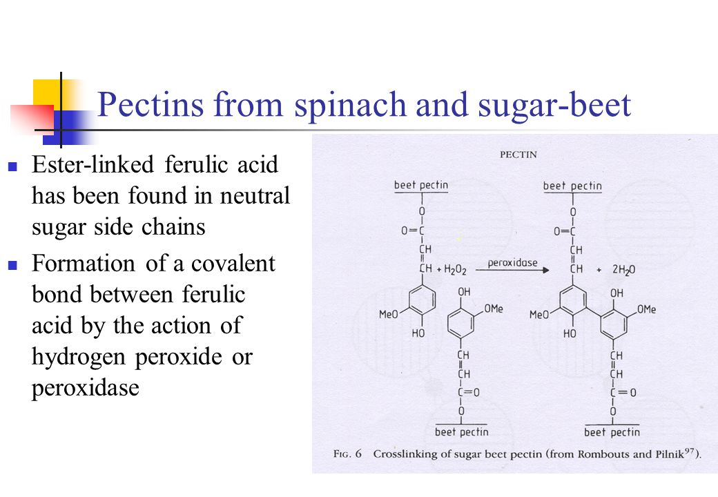Pectins from spinach and sugar-beet