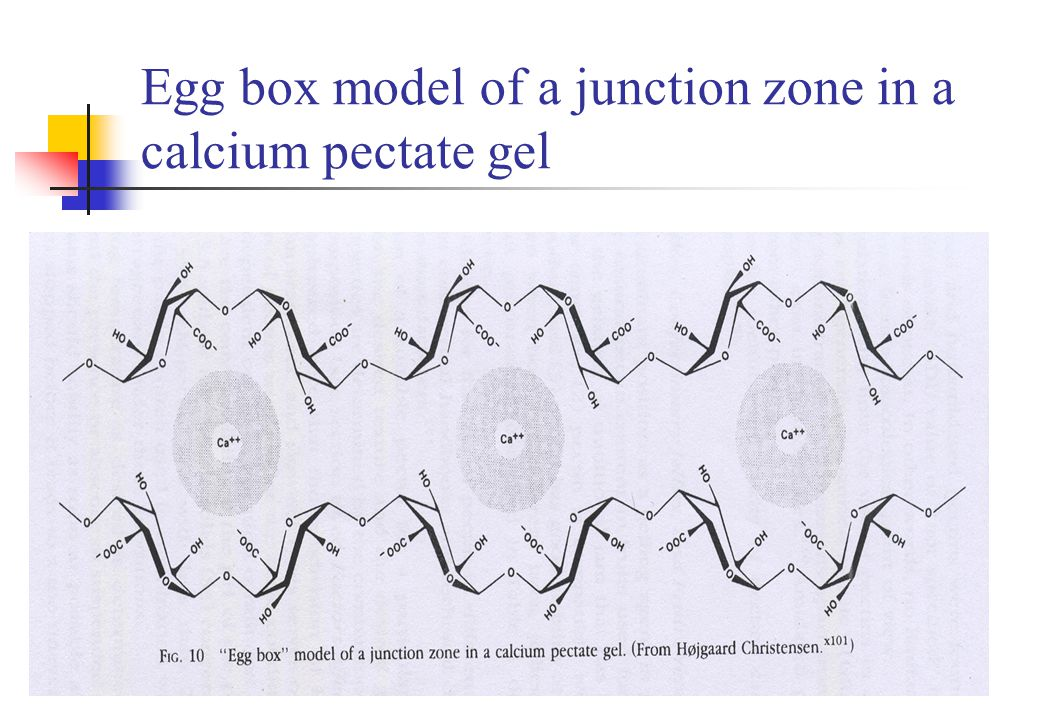 Egg box model of a junction zone in a calcium pectate gel