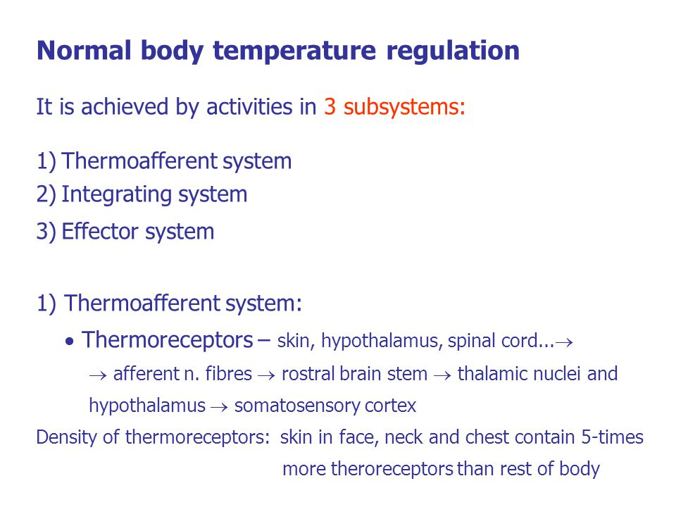 Normal body temperature regulation