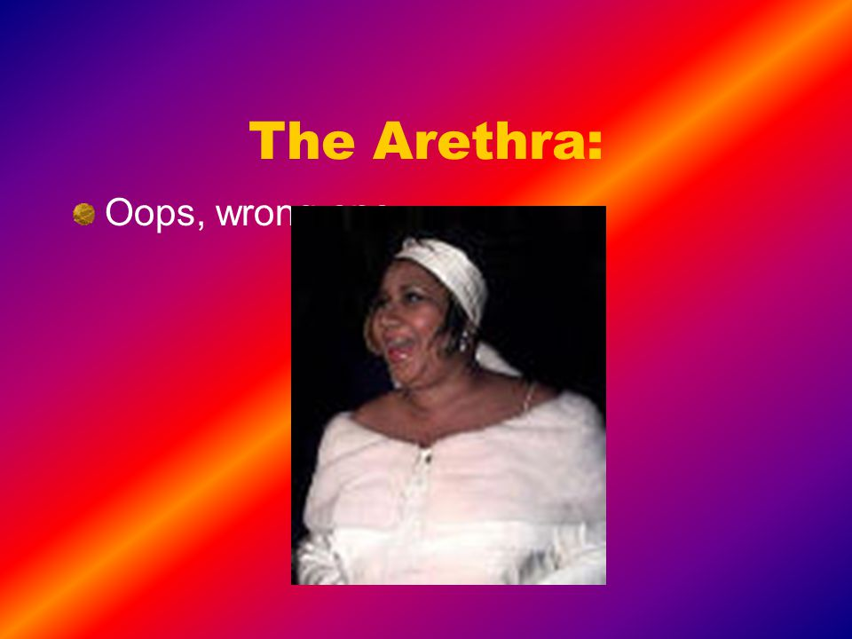 The Arethra: Oops, wrong one