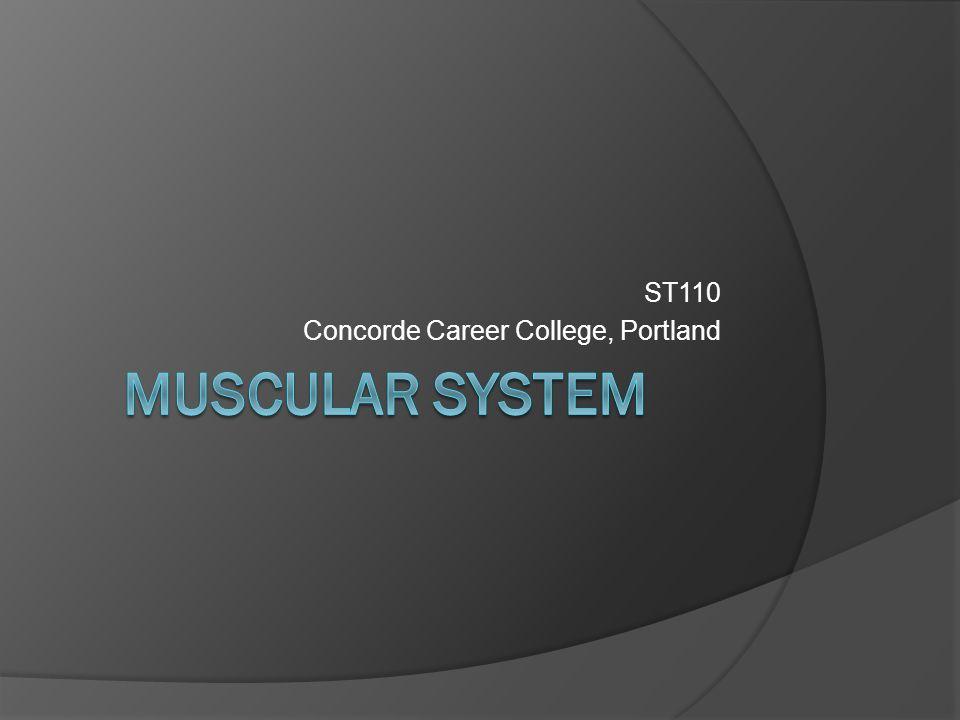 ST110 Concorde Career College, Portland