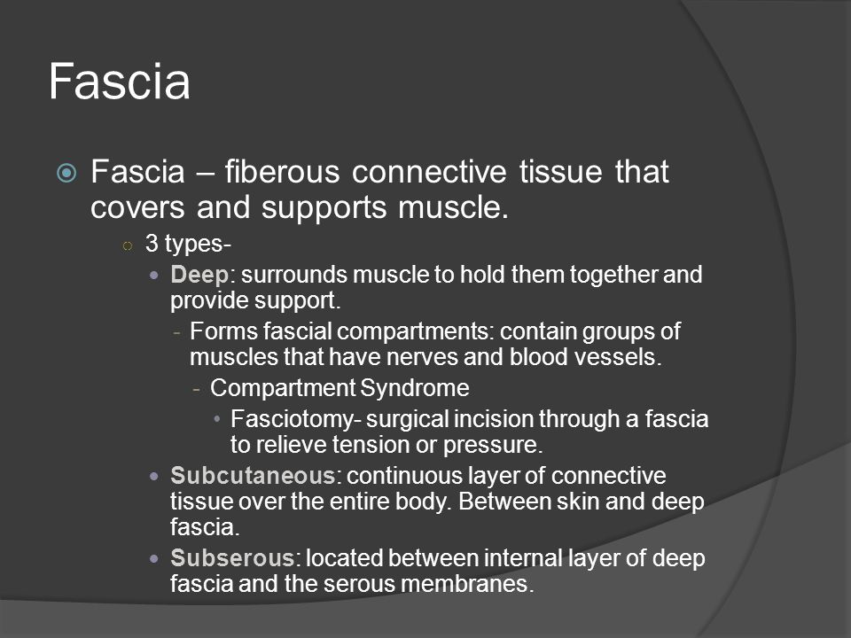 Fascia Fascia – fiberous connective tissue that covers and supports muscle. 3 types-
