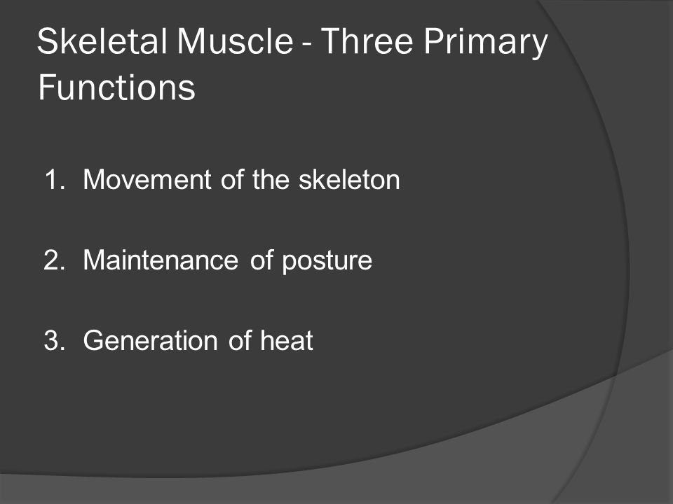 Skeletal Muscle - Three Primary Functions