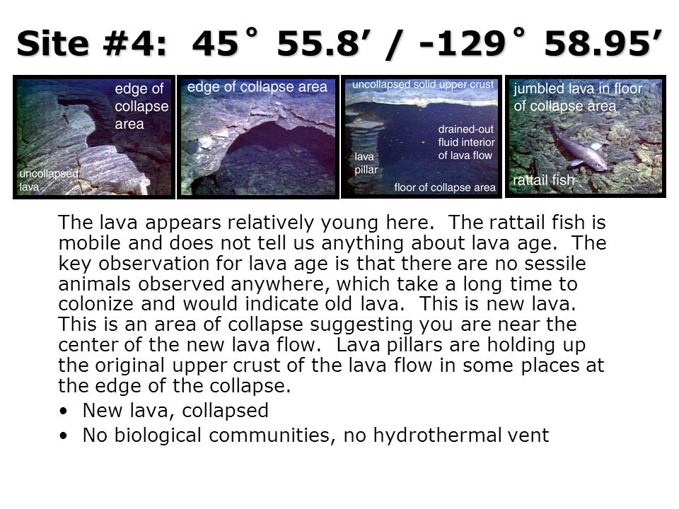 Site #4: 45˚ 55.8' / -129˚ 58.95'