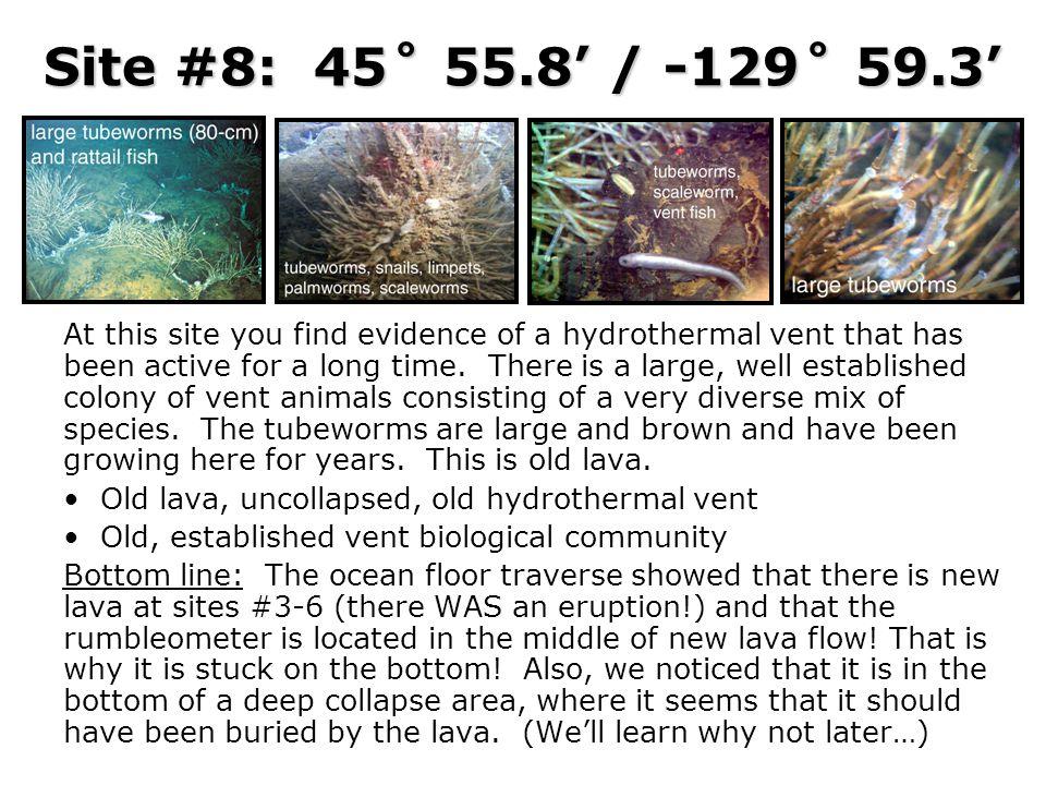 Site #8: 45˚ 55.8' / -129˚ 59.3'