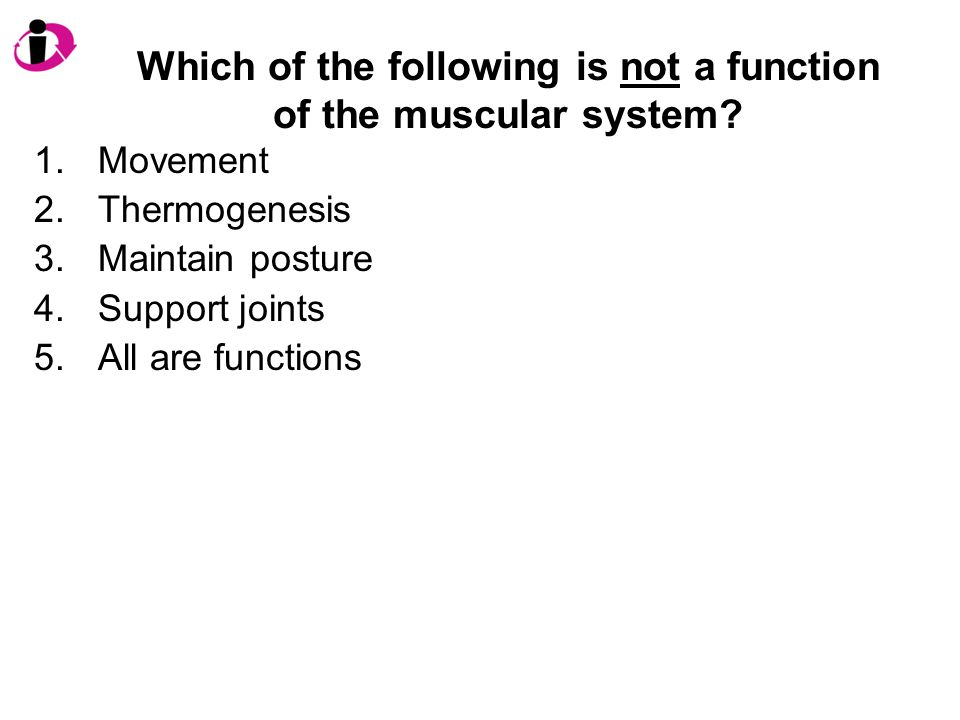 Which of the following is not a function of the muscular system