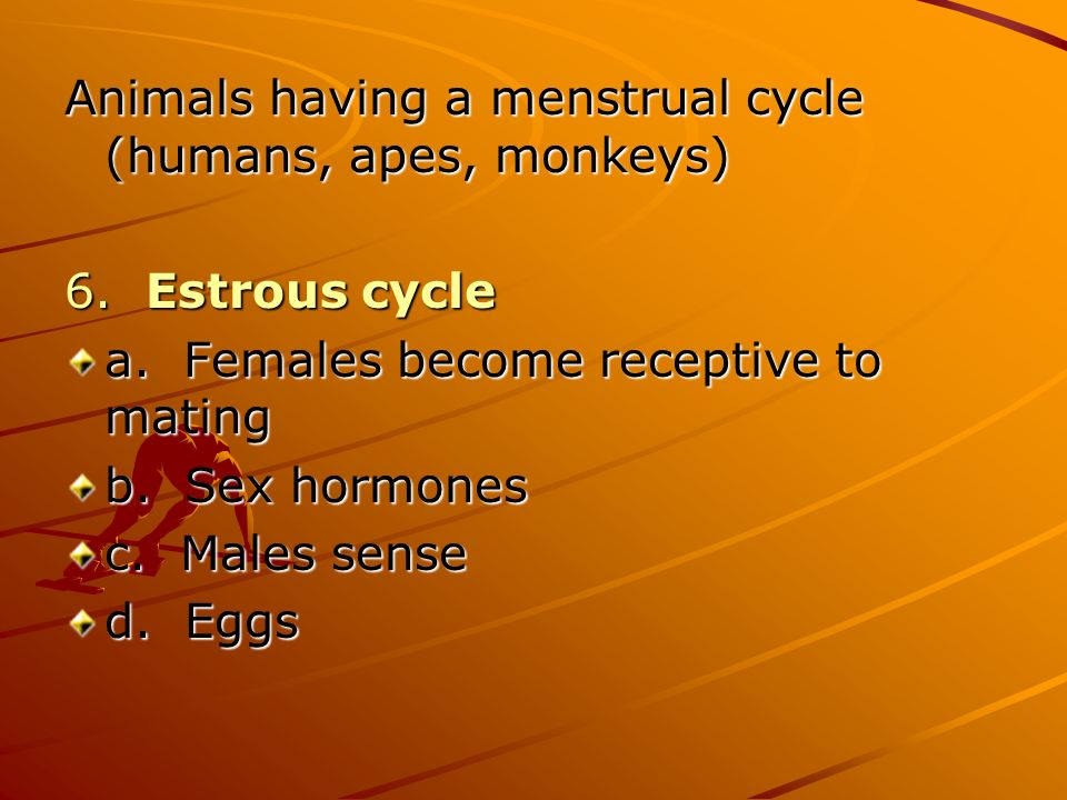 Animals having a menstrual cycle (humans, apes, monkeys)
