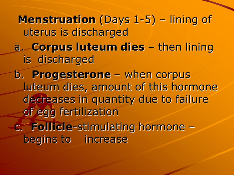 Menstruation (Days 1-5) – lining of uterus is discharged