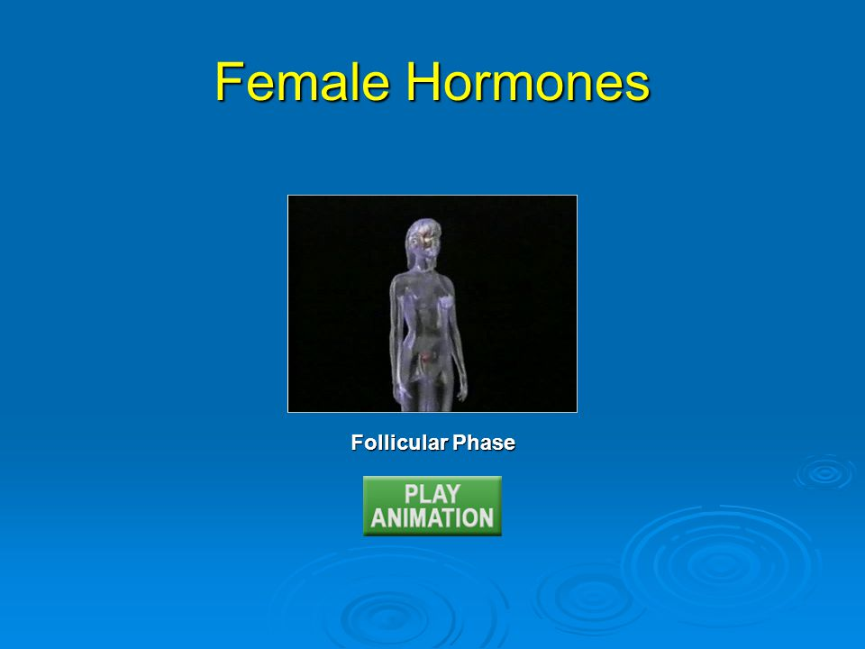 Female Hormones Follicular Phase
