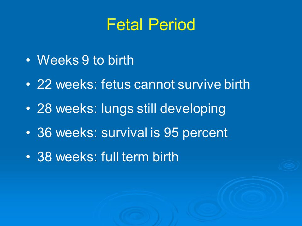Fetal Period Weeks 9 to birth 22 weeks: fetus cannot survive birth