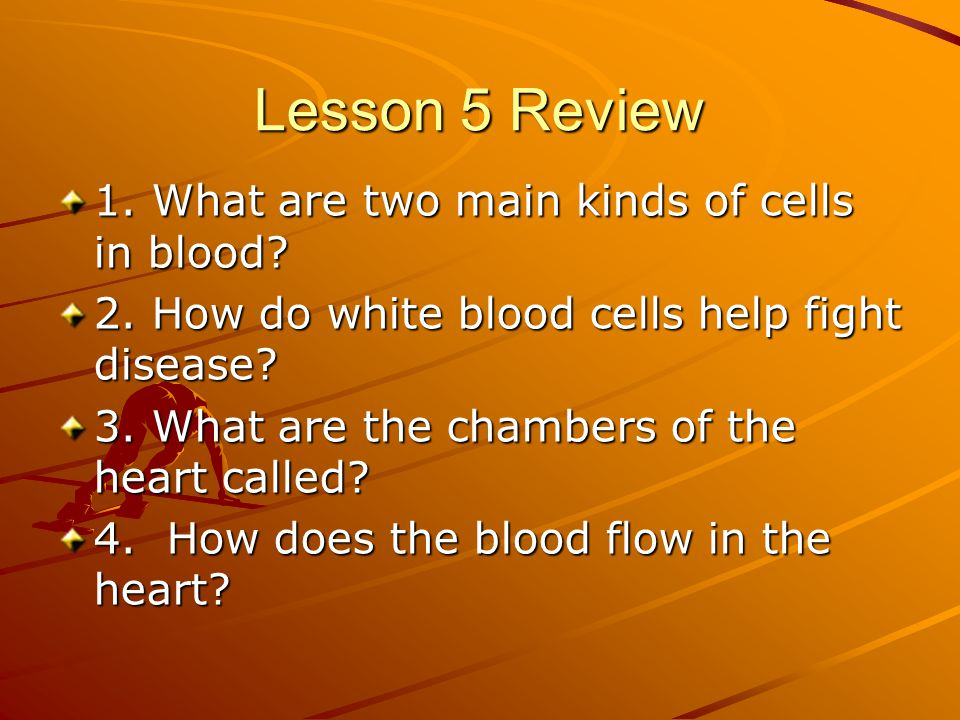Lesson 5 Review 1. What are two main kinds of cells in blood