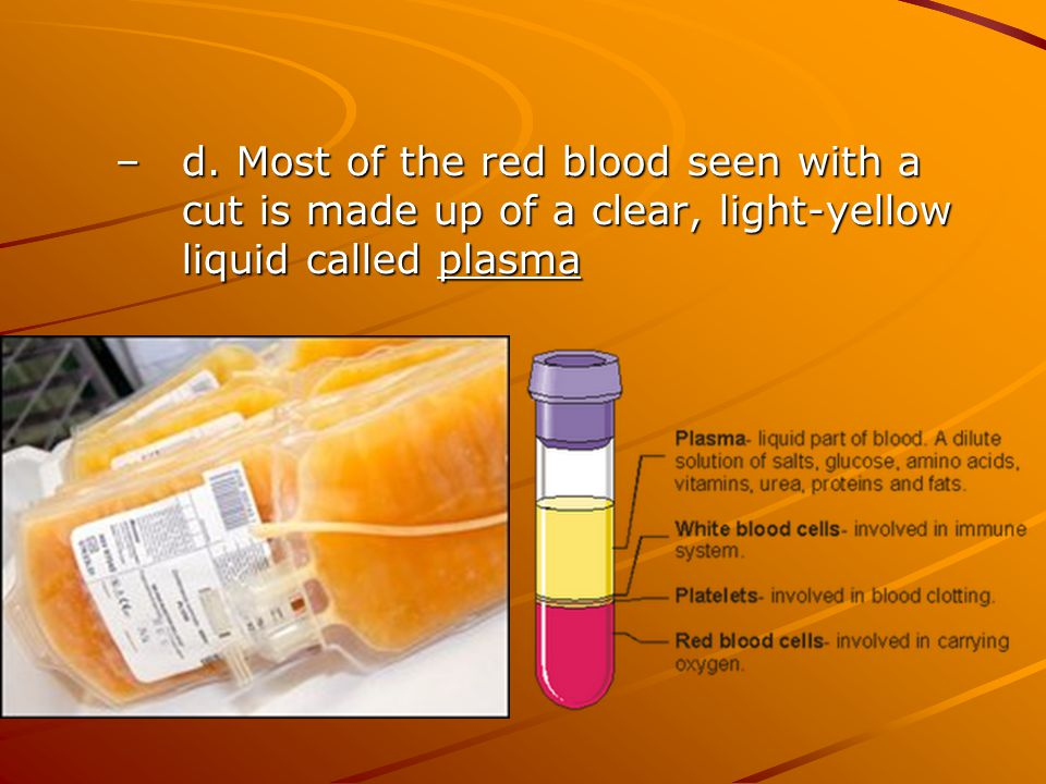 d. Most of the red blood seen with a cut is made up of a clear, light-yellow liquid called plasma