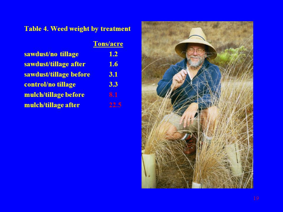 Table 4. Weed weight by treatment