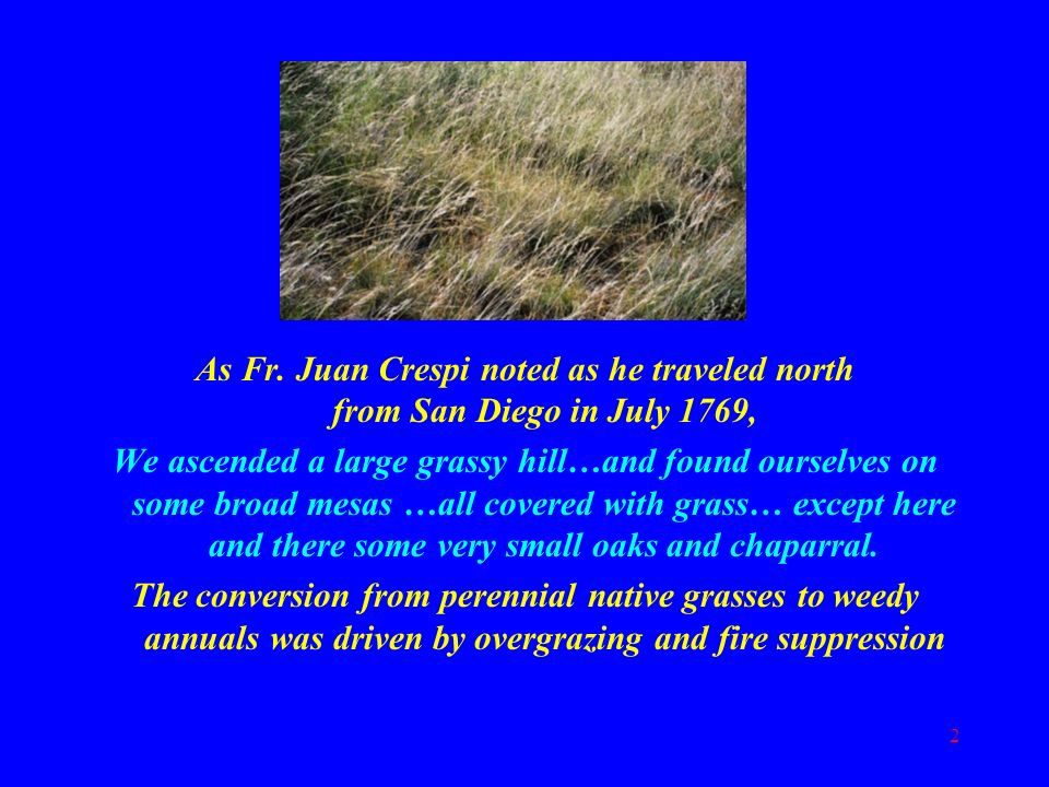 As Fr. Juan Crespi noted as he traveled north from San Diego in July 1769,