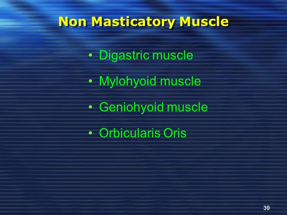 Non Masticatory Muscle