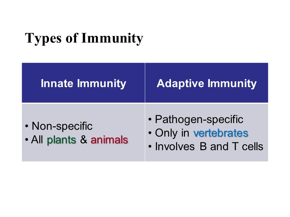 Types of Immunity Innate Immunity Adaptive Immunity Non-specific