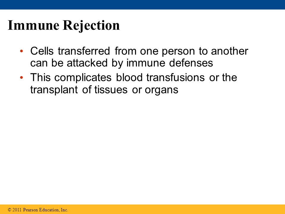Immune Rejection Cells transferred from one person to another can be attacked by immune defenses.