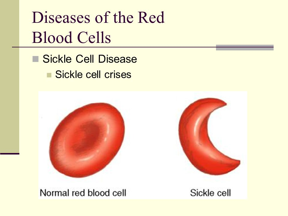 Diseases of the Red Blood Cells