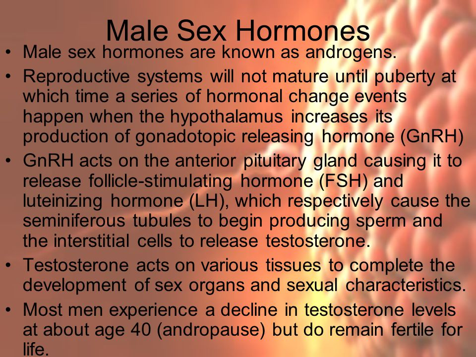 Male Sex Hormones Male sex hormones are known as androgens.