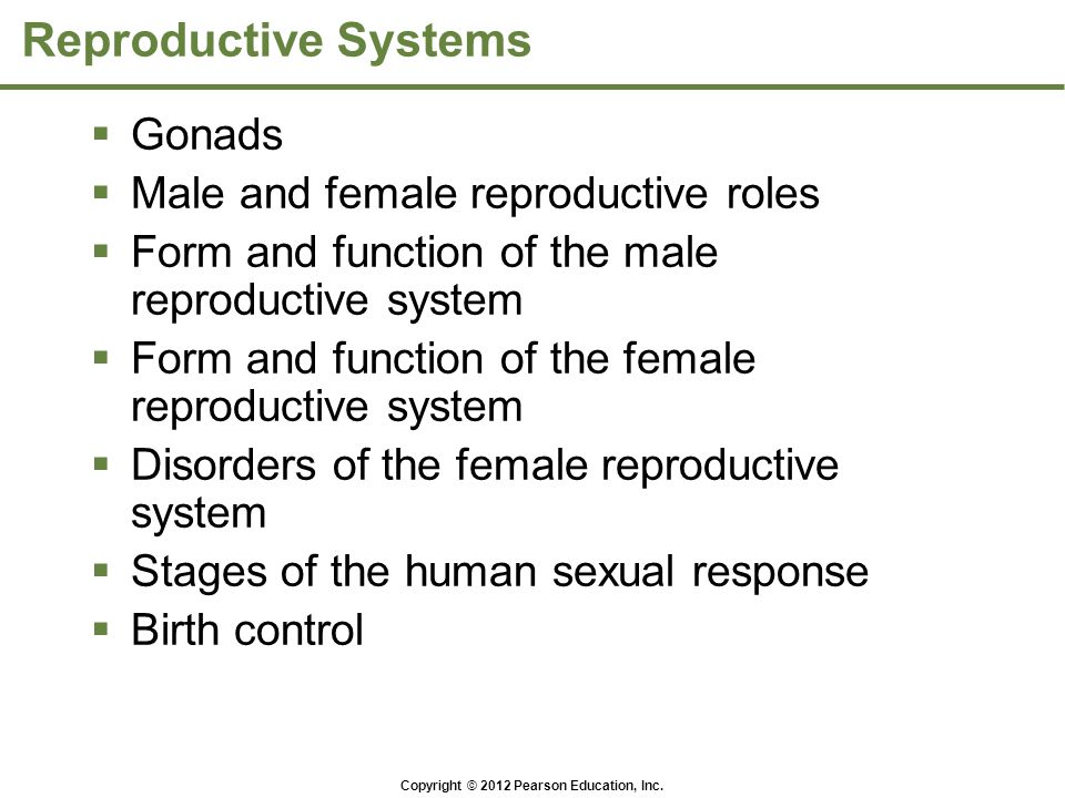 Reproductive Systems Gonads Male and female reproductive roles