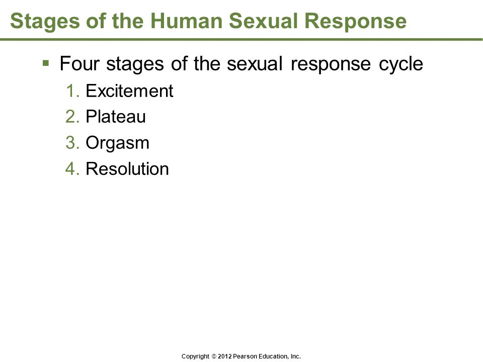 Stages of the Human Sexual Response