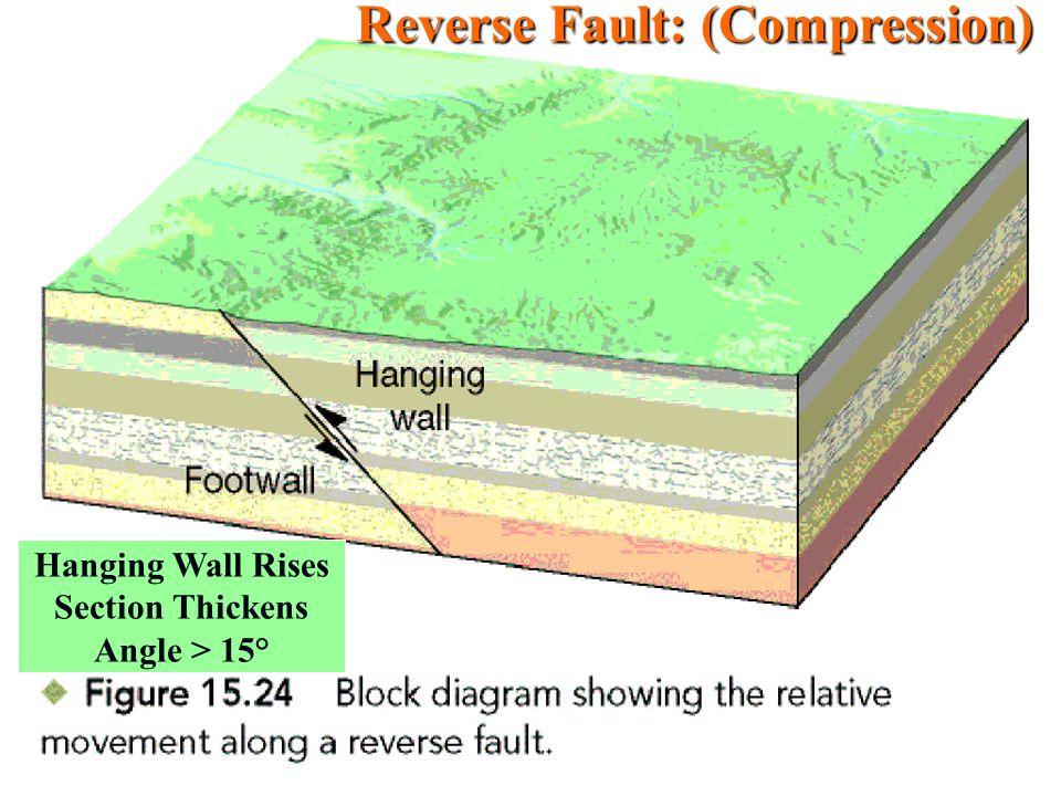 Reverse Fault: (Compression)
