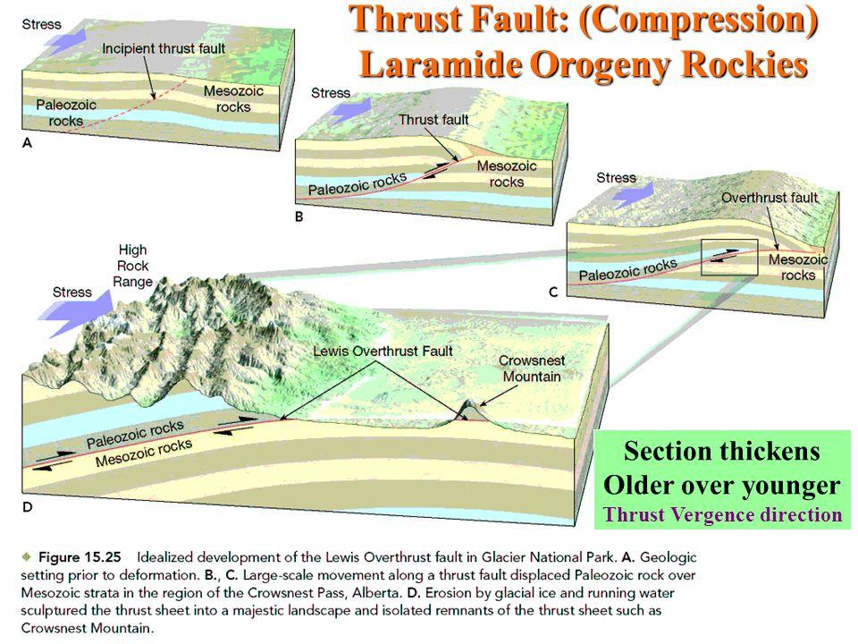 Thrust Fault: (Compression) Laramide Orogeny Rockies
