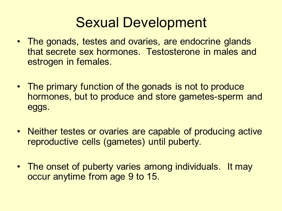 Sexual Development The gonads, testes and ovaries, are endocrine glands that secrete sex hormones. Testosterone in males and estrogen in females.