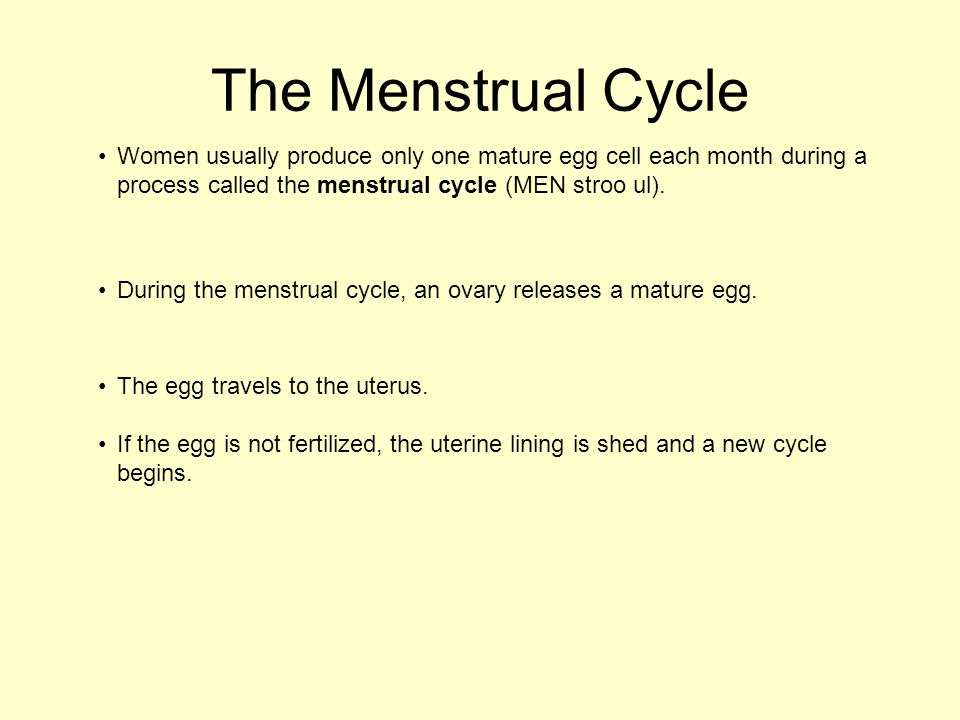 The Menstrual Cycle Women usually produce only one mature egg cell each month during a process called the menstrual cycle (MEN stroo ul).