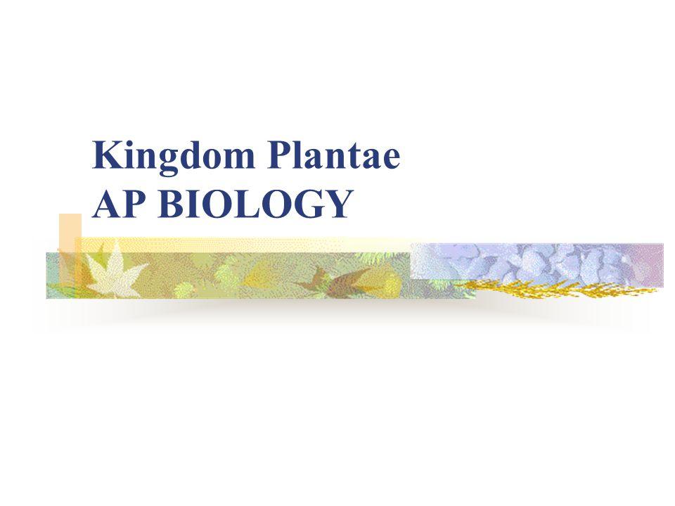 Kingdom Plantae AP BIOLOGY