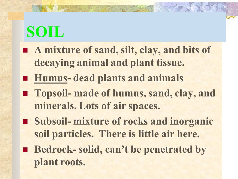 SOIL A mixture of sand, silt, clay, and bits of decaying animal and plant tissue. Humus- dead plants and animals.