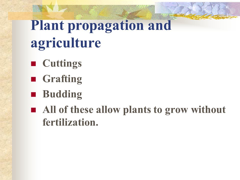 Plant propagation and agriculture