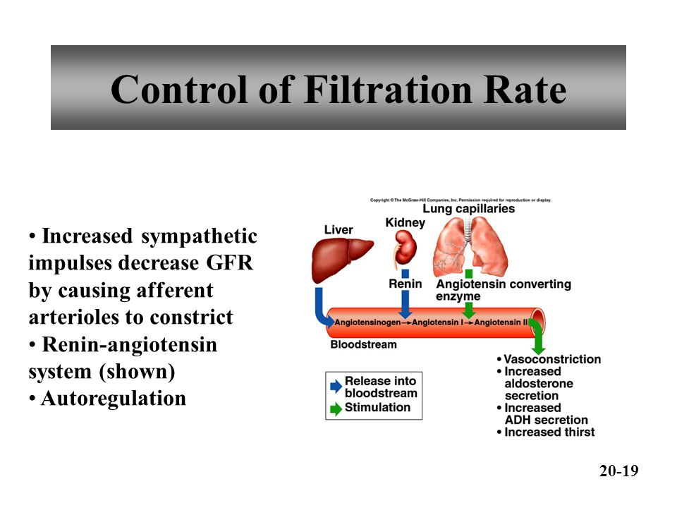 Control of Filtration Rate