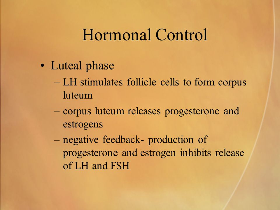 Hormonal Control Luteal phase