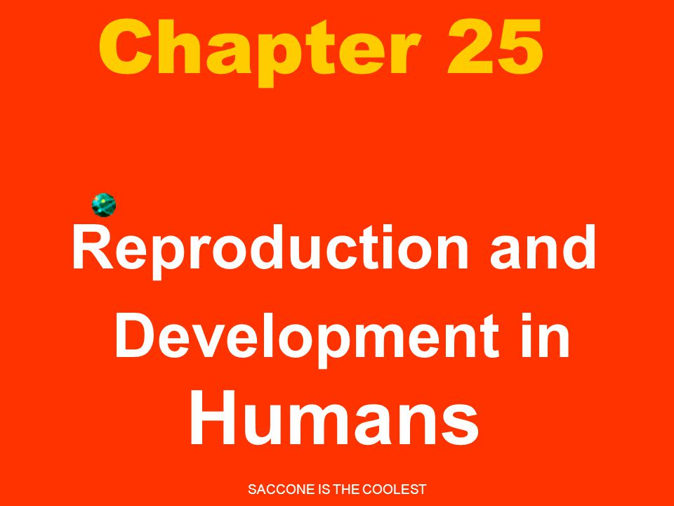 Reproduction and Development in Humans
