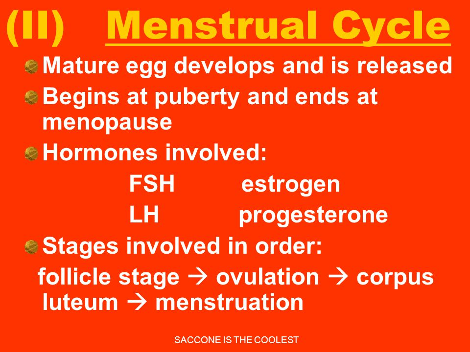 (II) Menstrual Cycle Mature egg develops and is released
