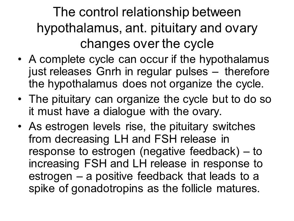The control relationship between hypothalamus, ant