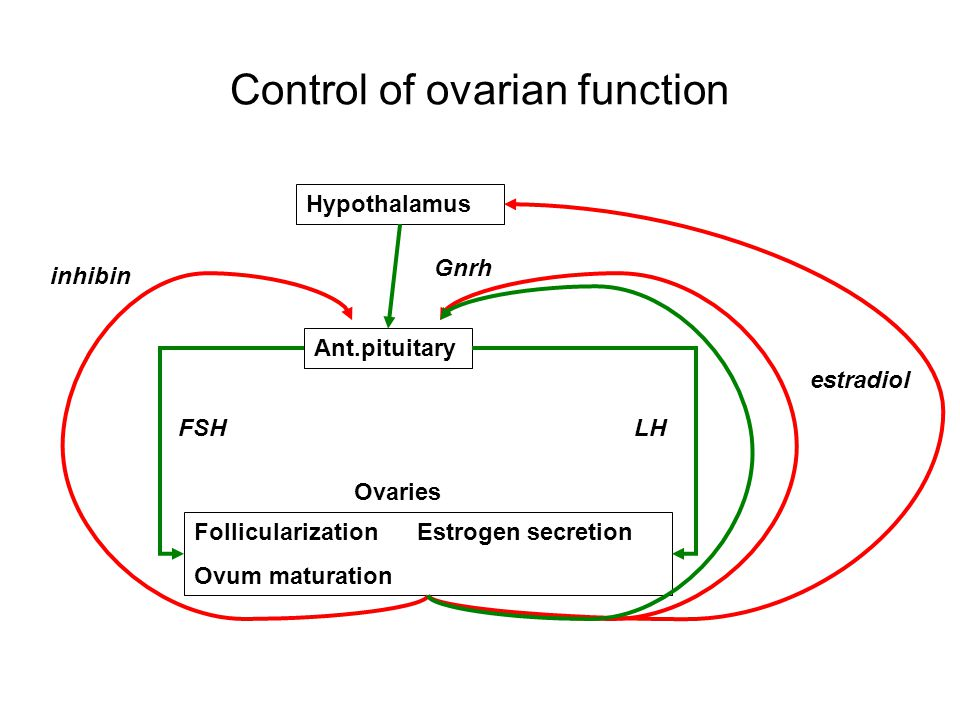Control of ovarian function