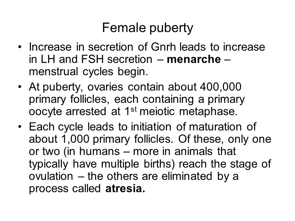 Female puberty Increase in secretion of Gnrh leads to increase in LH and FSH secretion – menarche – menstrual cycles begin.